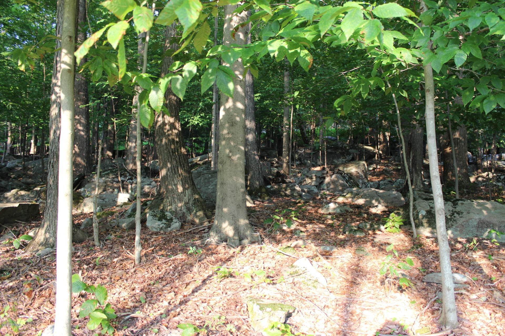4. Land for Sale at 22 Hillberry Ln Lake Ariel, Pennsylvania 18436 United States