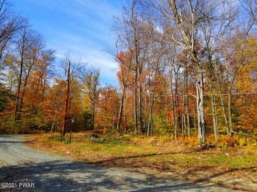 5. Land for Sale at E Rockville Ct Newfoundland, Pennsylvania 18445 United States