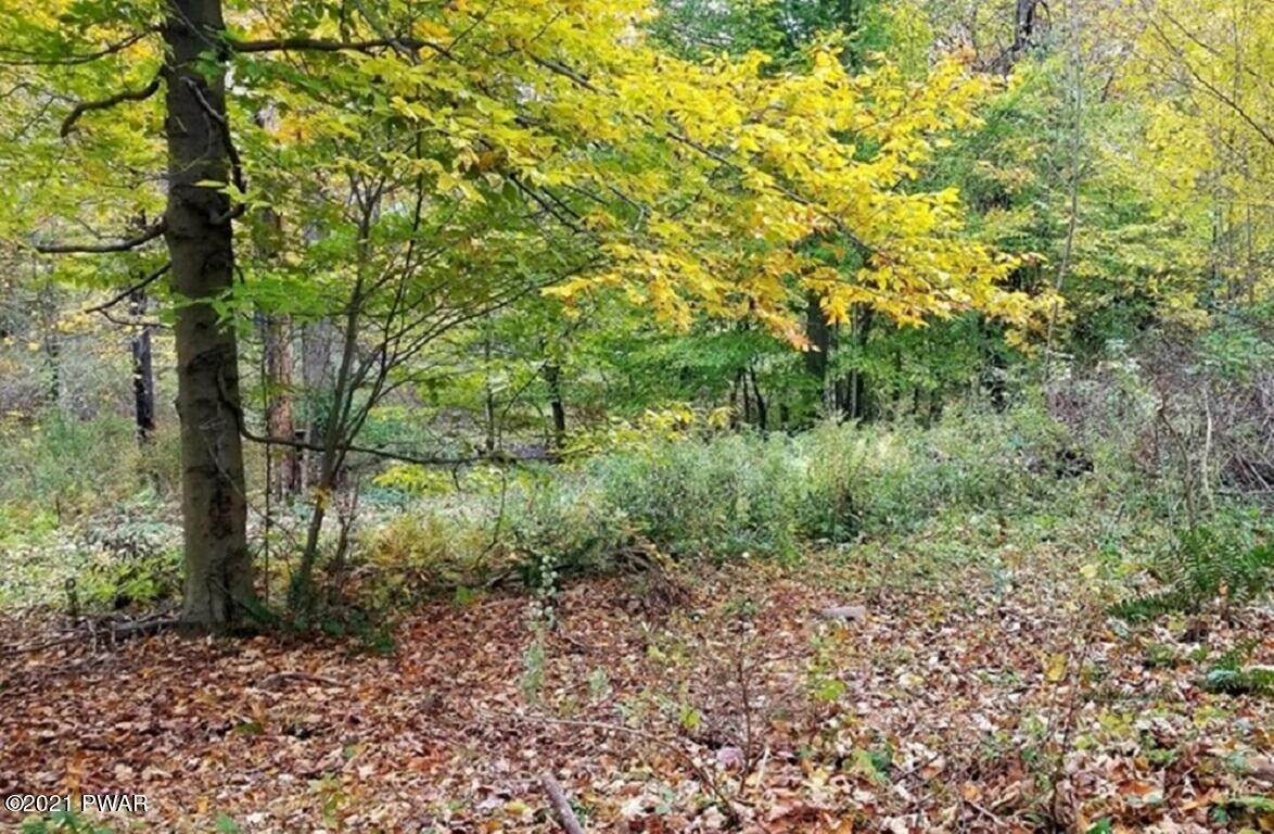6. Land for Sale at E Rockville Ct Newfoundland, Pennsylvania 18445 United States
