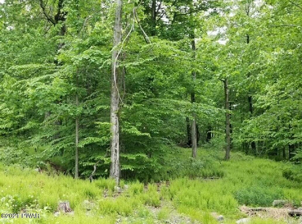9. Land for Sale at E Rockville Ct Newfoundland, Pennsylvania 18445 United States