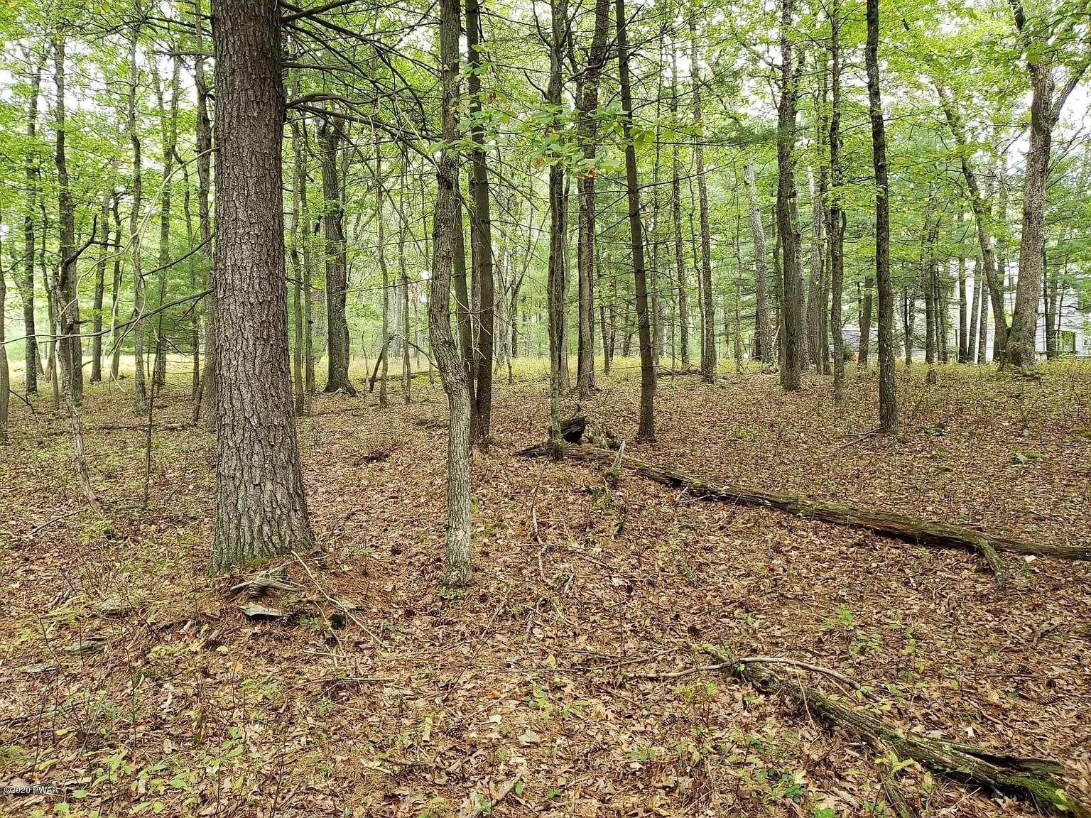 3. Land for Sale at Lot 110 Kinsale Ln Dingmans Ferry, Pennsylvania 18328 United States