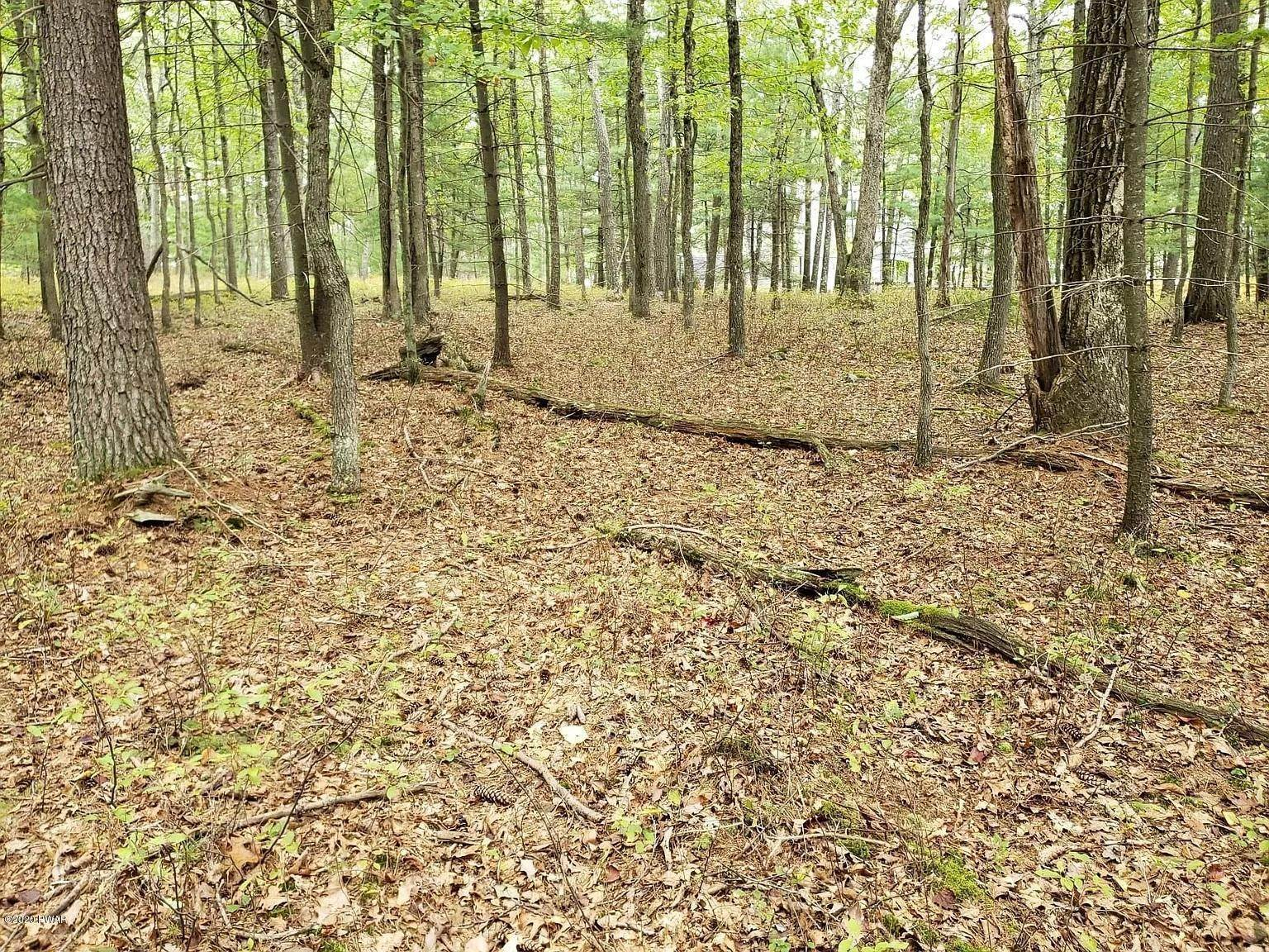 4. Land for Sale at Lot 110 Kinsale Ln Dingmans Ferry, Pennsylvania 18328 United States