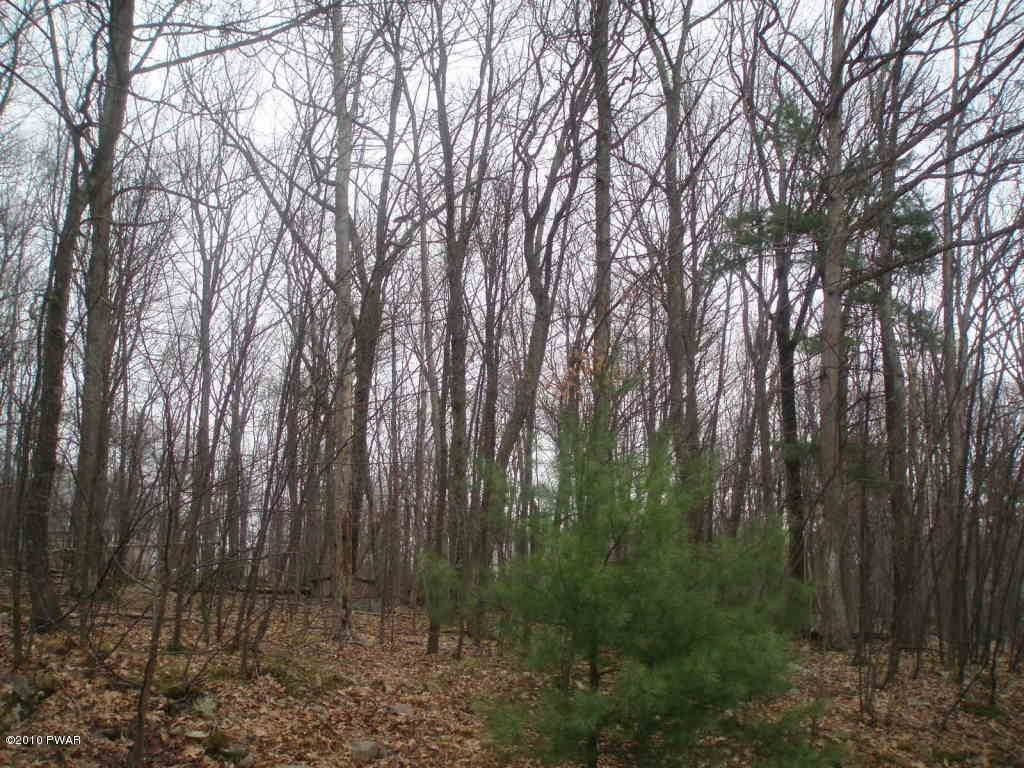 Land for Sale at Lot 1167 Crocus Ln Milford, Pennsylvania 18337 United States
