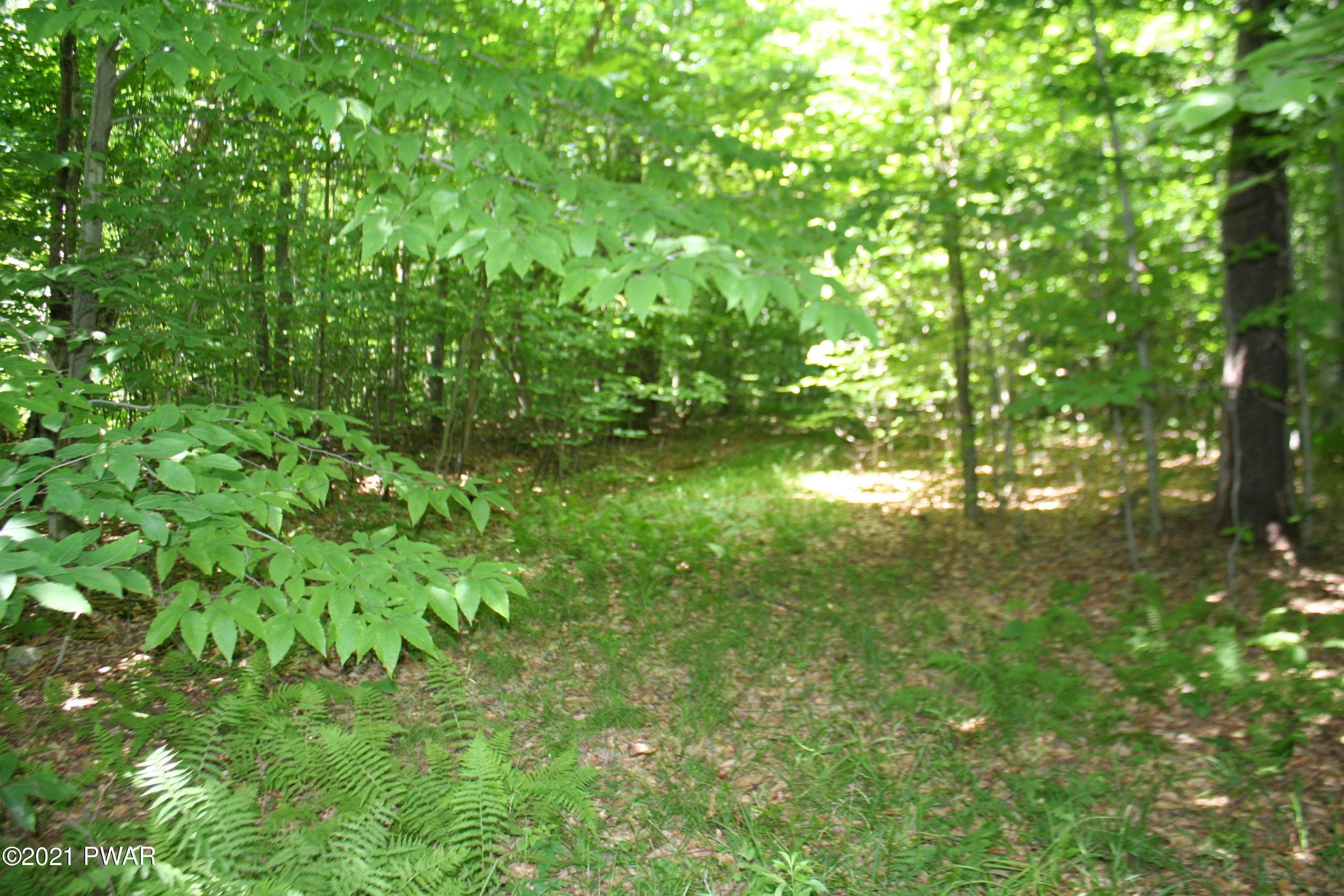 Land for Sale at Ravnikar Rd Forest City, Pennsylvania 18421 United States