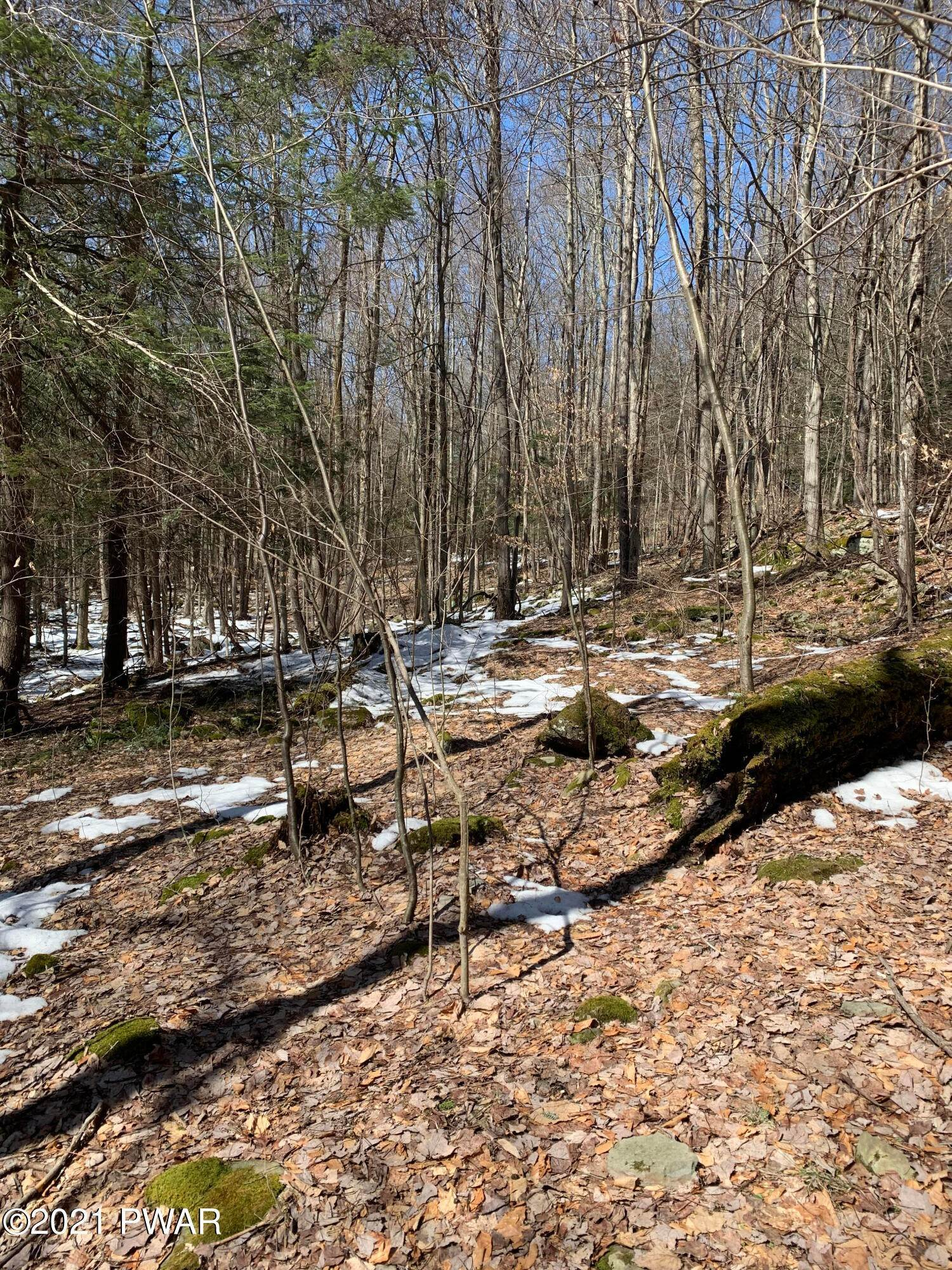 3. Land for Sale at Deer Run Ln Waymart, Pennsylvania 18472 United States
