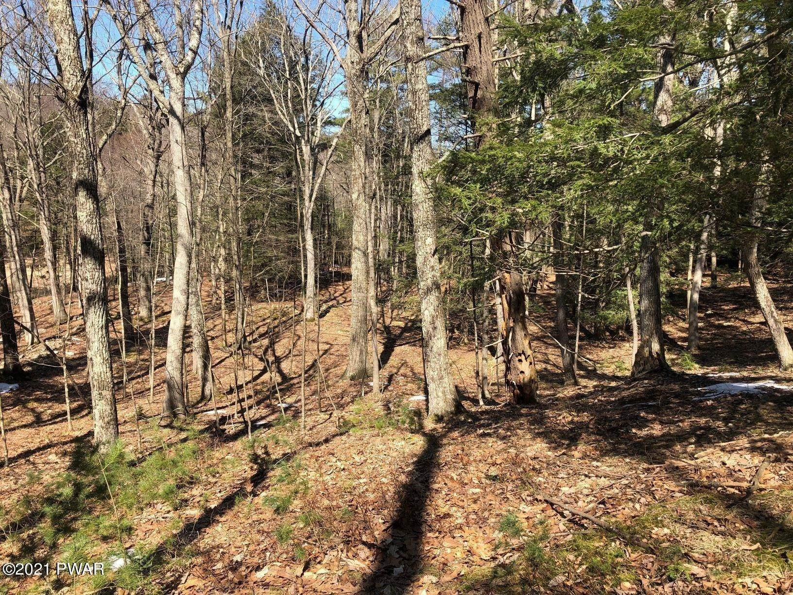 Property for Sale at Luftus Ln Dingmans Ferry, Pennsylvania 18328 United States