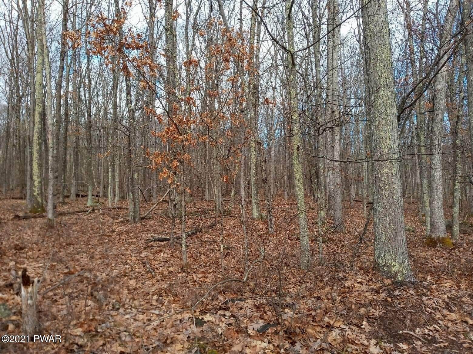 9. Land for Sale at 1033 Acacia Dr Hawley, Pennsylvania 18428 United States
