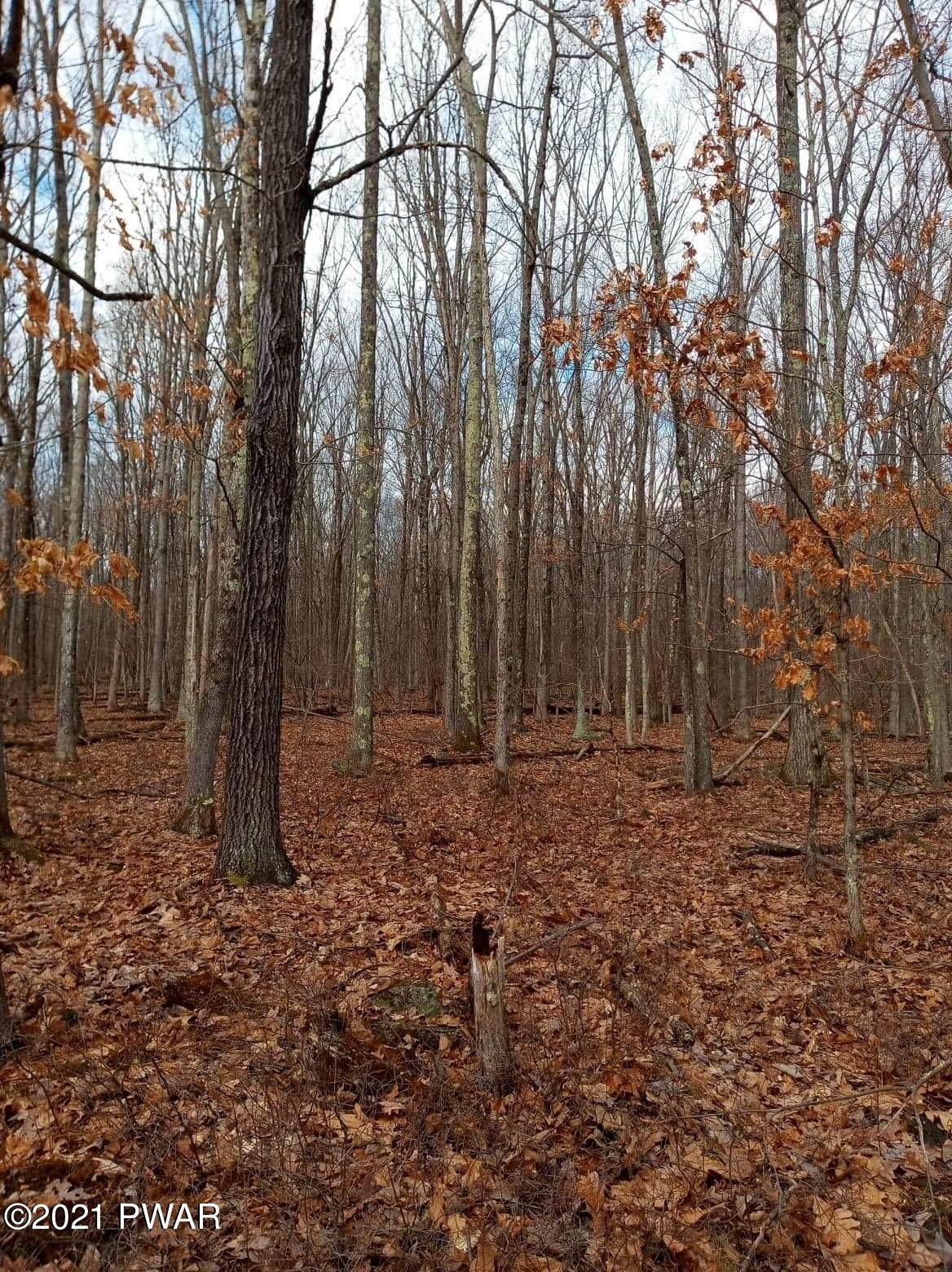 10. Land for Sale at 1033 Acacia Dr Hawley, Pennsylvania 18428 United States
