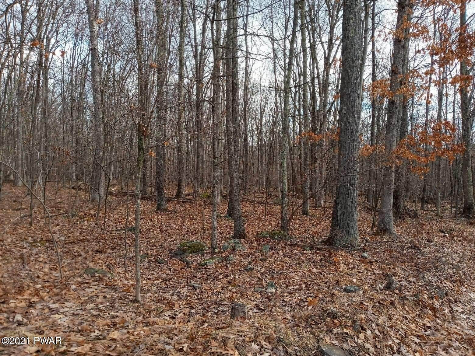 11. Land for Sale at 1033 Acacia Dr Hawley, Pennsylvania 18428 United States