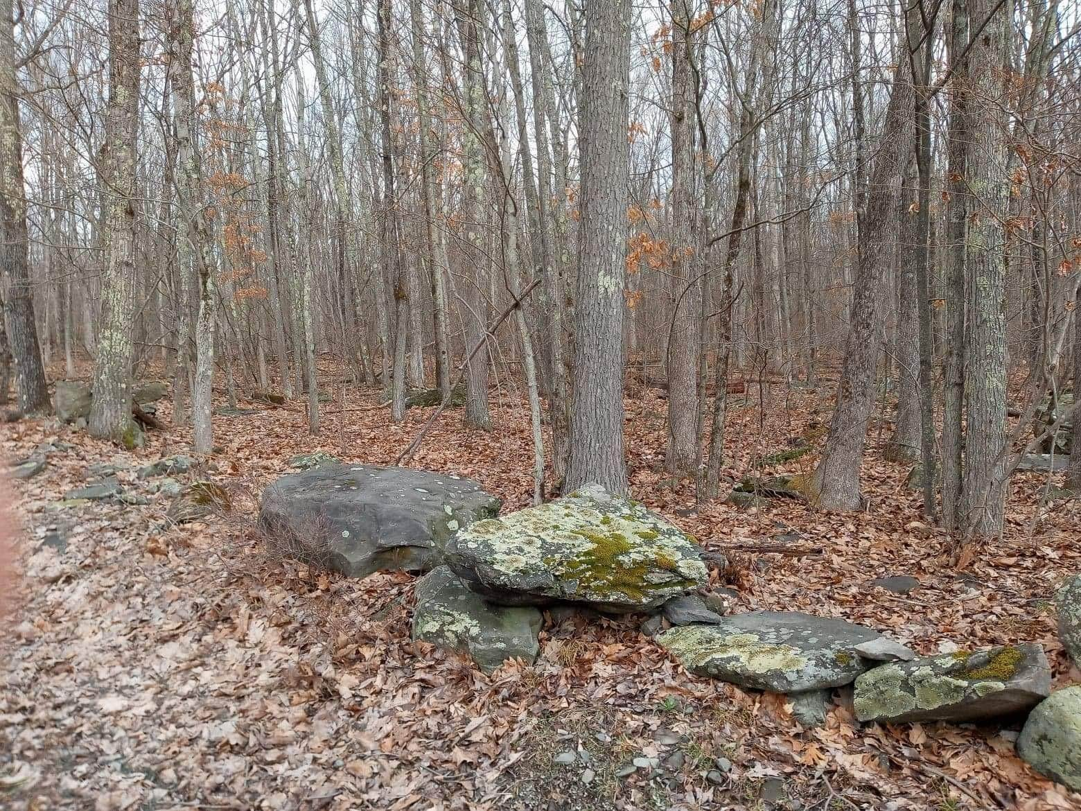 13. Land for Sale at 1033 Acacia Dr Hawley, Pennsylvania 18428 United States