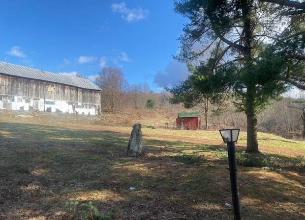 19. Single Family Homes for Sale at 1196 Pine Mill Rd Equinunk, Pennsylvania 18417 United States