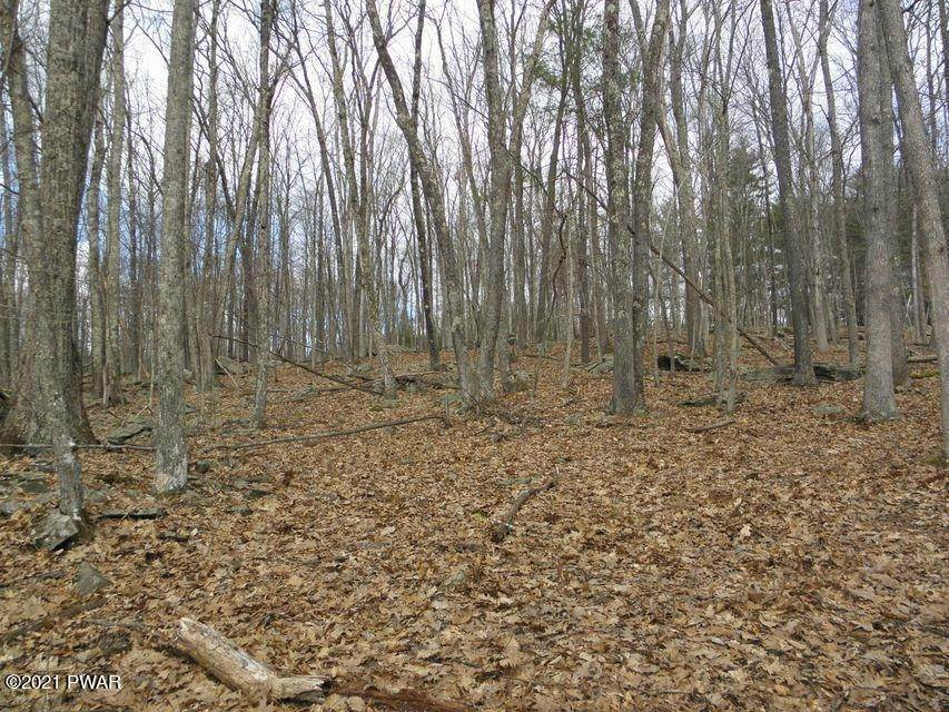 2. Land for Sale at 804 Tink Wig Dr Hawley, Pennsylvania 18428 United States