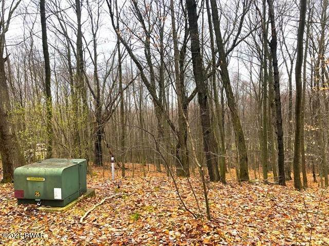 Land for Sale at 28 Murnin Rd Lake Ariel, Pennsylvania 18436 United States