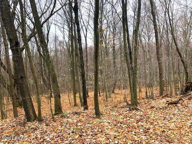 2. Land for Sale at 28 Murnin Rd Lake Ariel, Pennsylvania 18436 United States