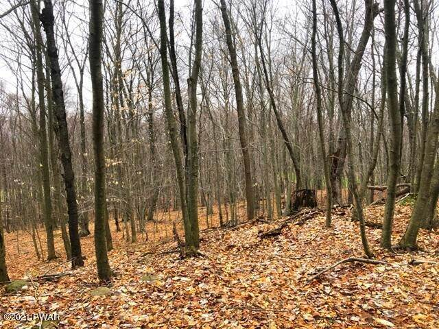 3. Land for Sale at 28 Murnin Rd Lake Ariel, Pennsylvania 18436 United States