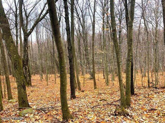 4. Land for Sale at 28 Murnin Rd Lake Ariel, Pennsylvania 18436 United States