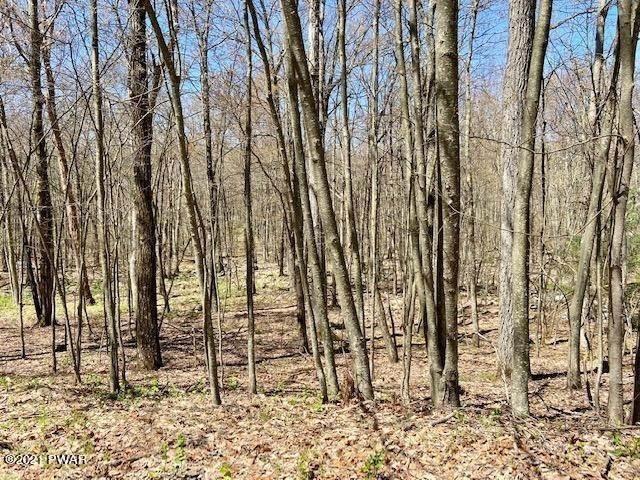 Land for Sale at Brownstone Dr Milford, Pennsylvania 18337 United States
