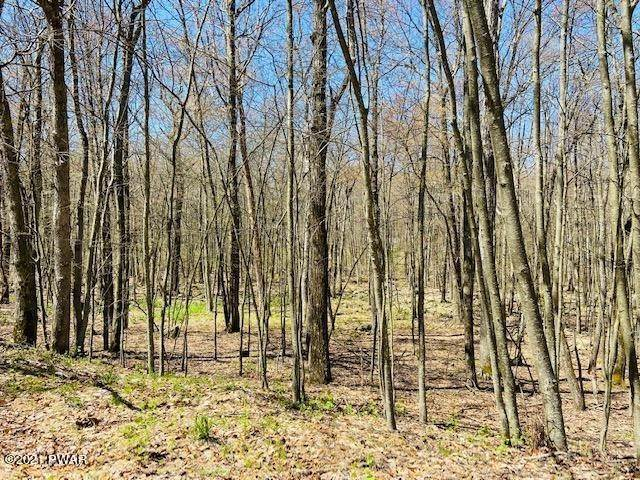 2. Land for Sale at Brownstone Dr Milford, Pennsylvania 18337 United States