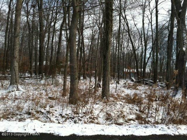 Land for Sale at D 25 Poplar Lane Tannersville, Pennsylvania 18301 United States