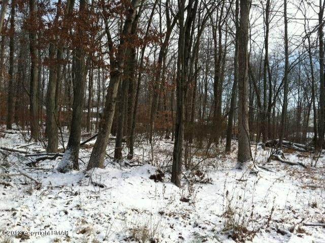 3. Land for Sale at D 25 Poplar Lane Tannersville, Pennsylvania 18301 United States