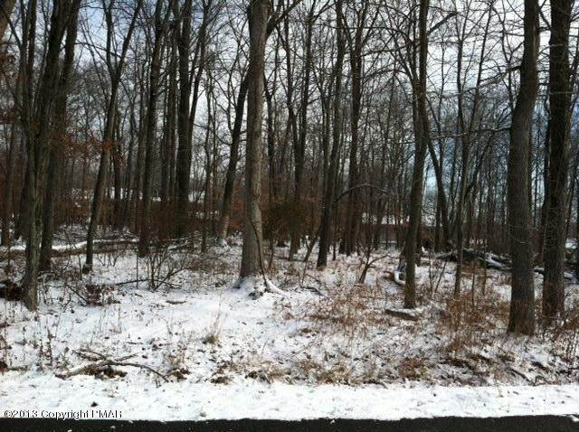 Land for Sale at D 24 Poplar Lane Tannersville, Pennsylvania 18301 United States