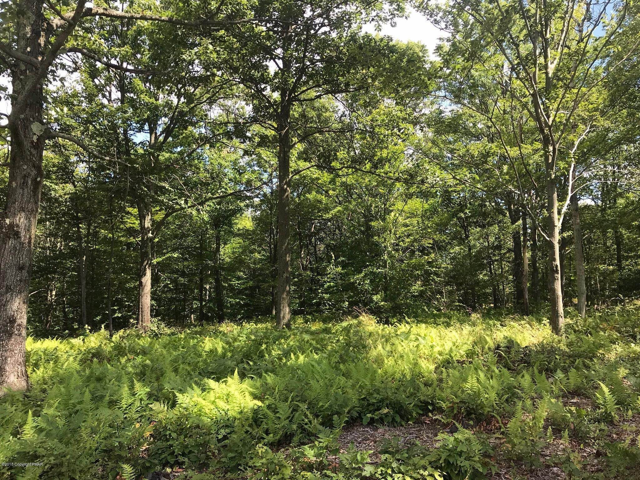 6. Land for Sale at Lot 106 Summit Woods Rd. Moscow, Pennsylvania 18444 United States