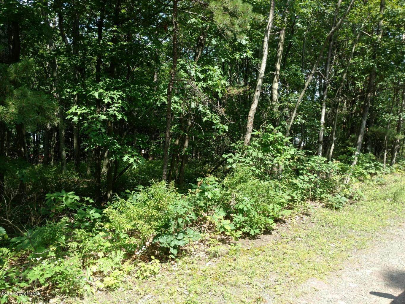 Land for Sale at #7222 Saw Mill Rd Long Pond, Pennsylvania 18334 United States