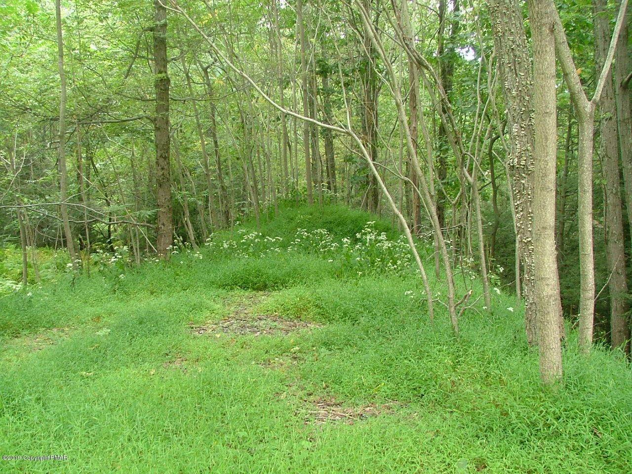 Land for Sale at 9 Spruce Drive Swiftwater, Pennsylvania 18370 United States
