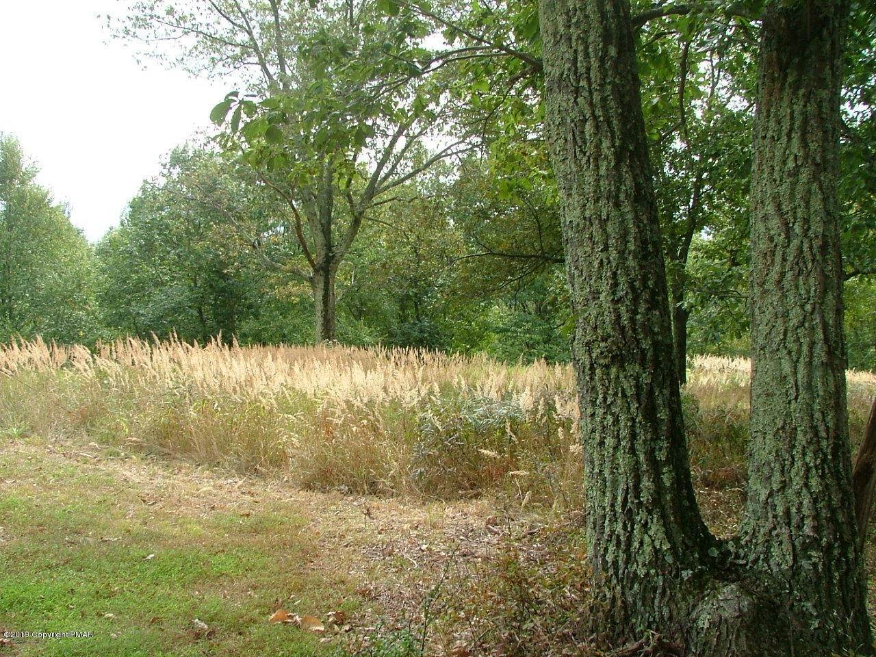 Land for Sale at 66 Laurel Loop Swiftwater, Pennsylvania 18370 United States