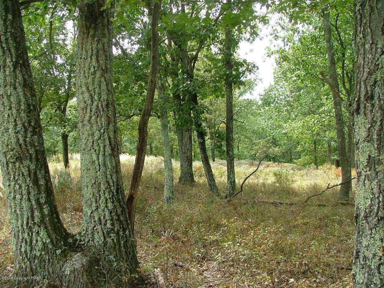 2. Land for Sale at 66 Laurel Loop Swiftwater, Pennsylvania 18370 United States