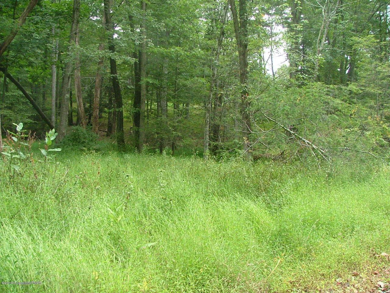 Land for Sale at 4 Spruce Dr Swiftwater, Pennsylvania 18370 United States