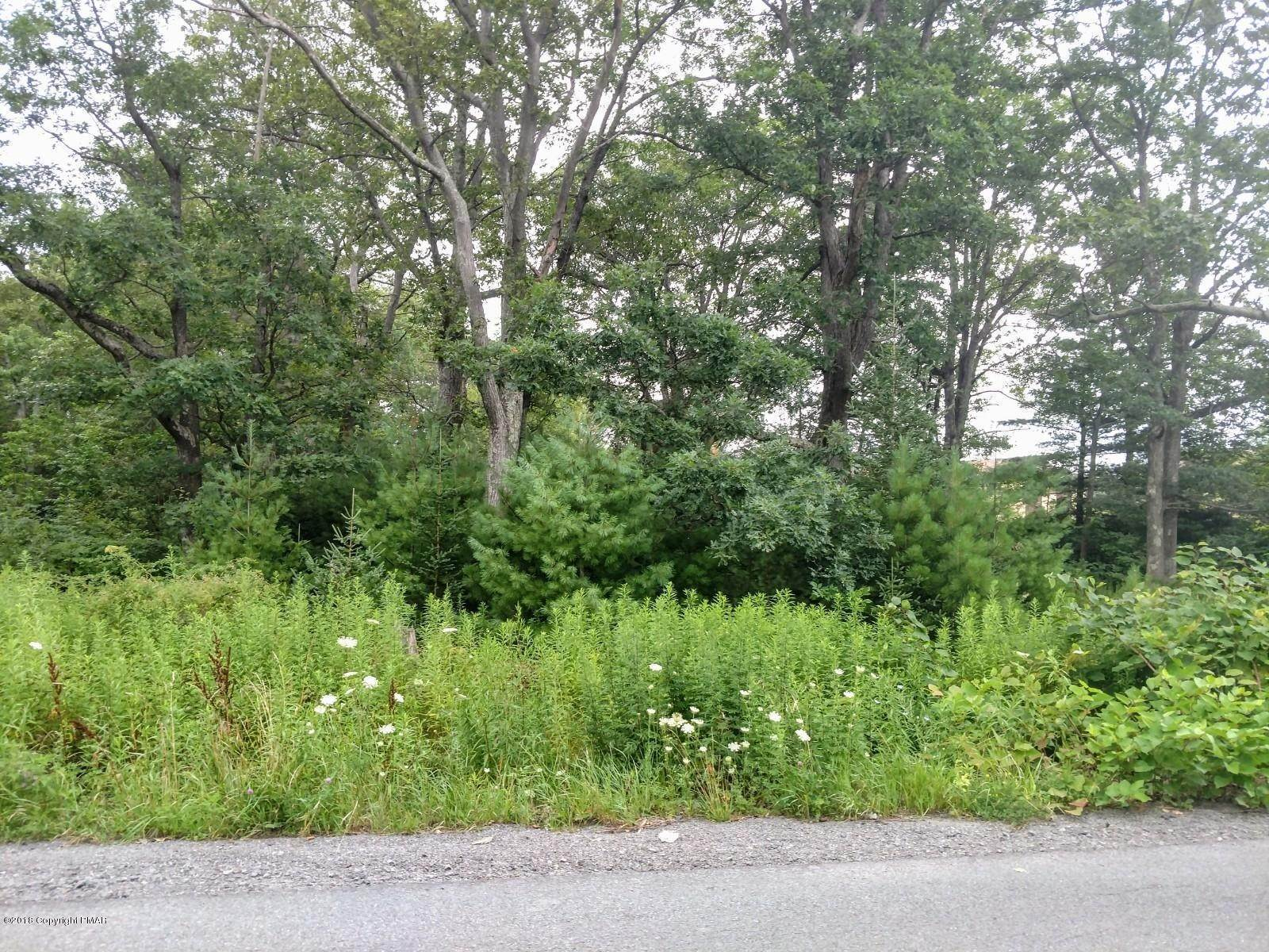 Land for Sale at Belmont Ave Mount Pocono, Pennsylvania 18344 United States