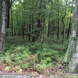 Land for Sale at W Clarke's Ln & Boxwood Dr Jim Thorpe, Pennsylvania 18229 United States