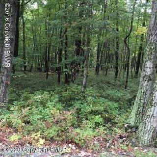 Land for Sale at W Clarks Ln Jim Thorpe, Pennsylvania 18229 United States