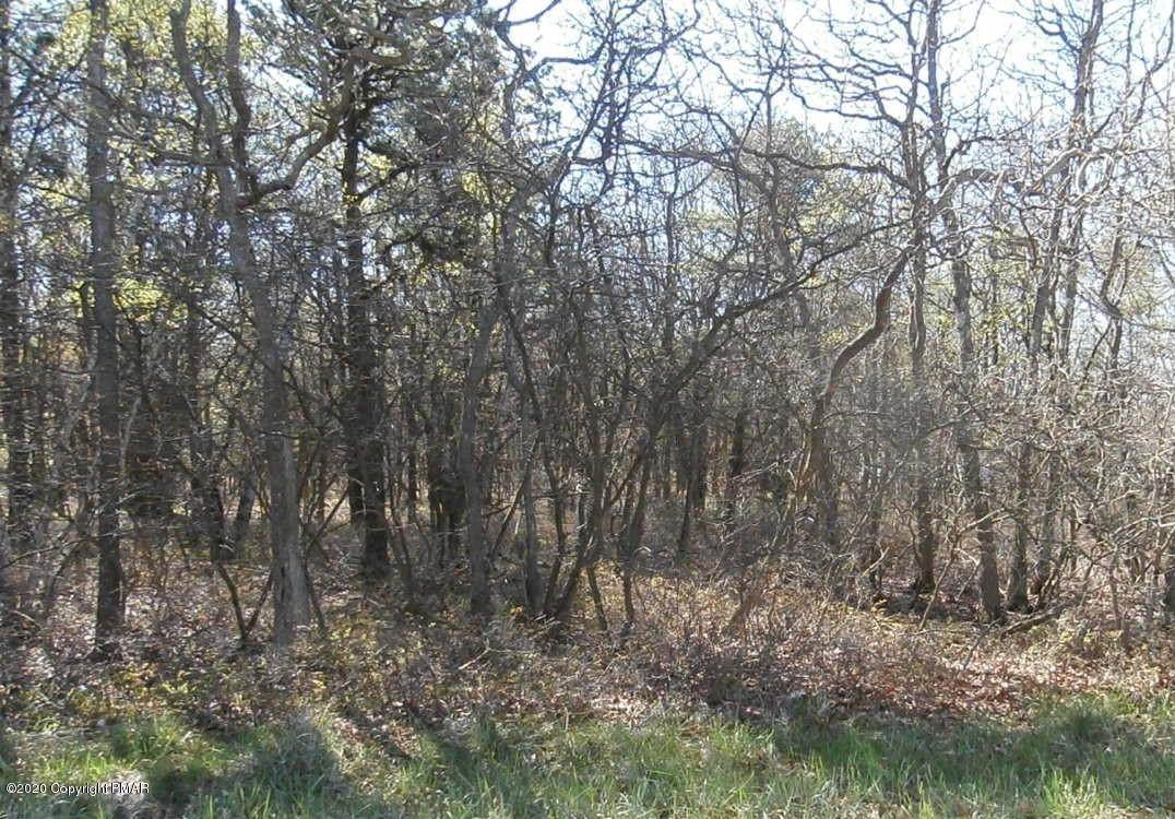 3. Land for Sale at 95 Bismark Rd Blakeslee, Pennsylvania 18610 United States