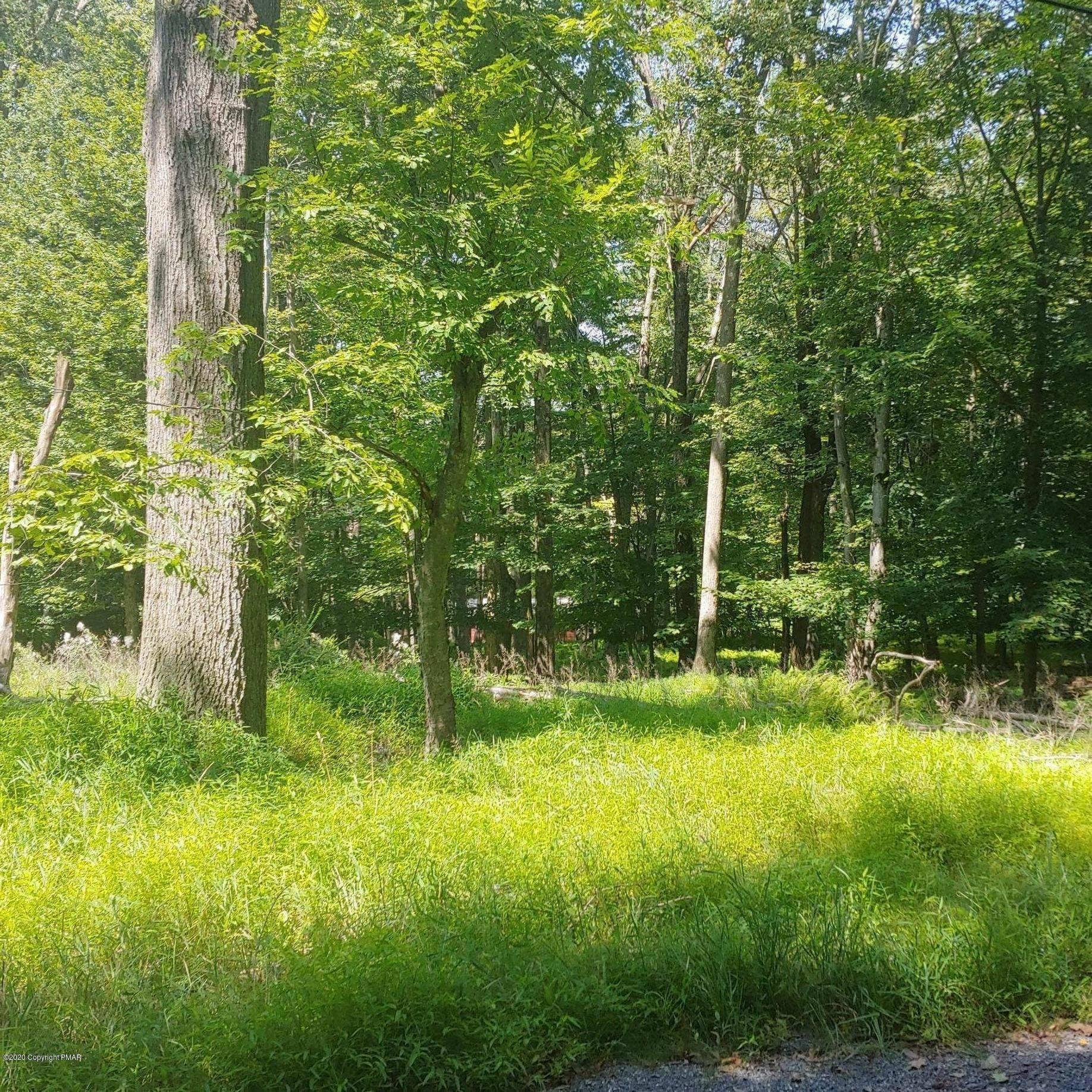 Land for Sale at 340 Fawn Road Rd Pocono Lake, Pennsylvania 18347 United States
