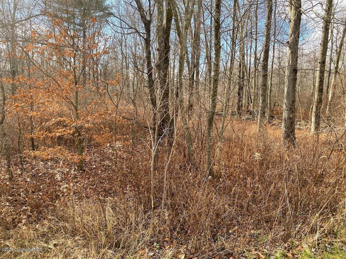 14. Land for Sale at 14 Driftwood Road Blakeslee, Pennsylvania 18610 United States