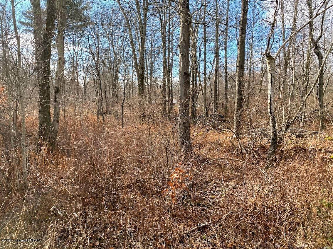 15. Land for Sale at 14 Driftwood Road Blakeslee, Pennsylvania 18610 United States