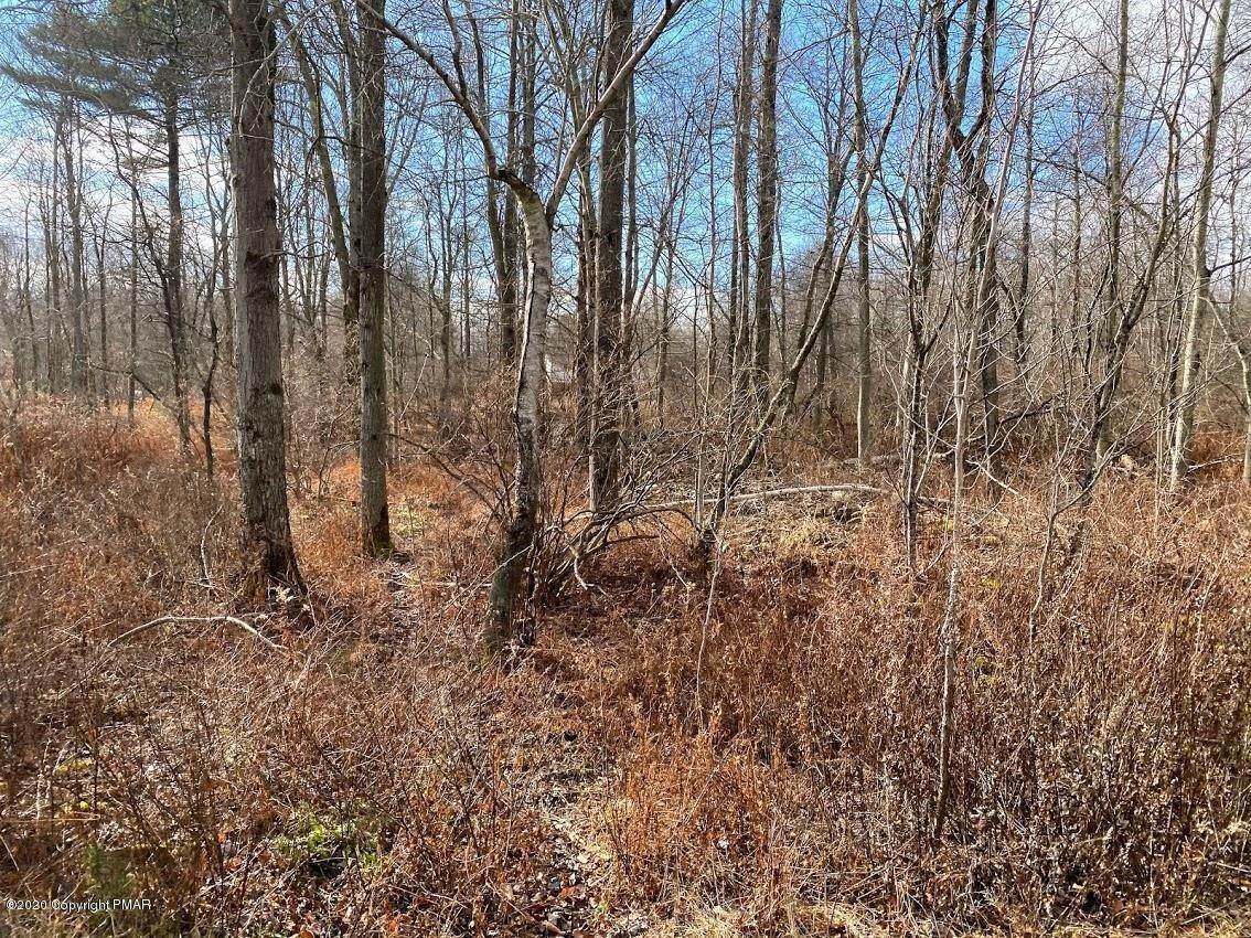 16. Land for Sale at 14 Driftwood Road Blakeslee, Pennsylvania 18610 United States