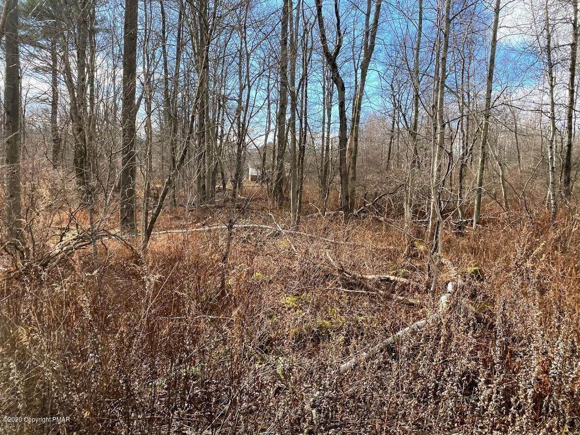 17. Land for Sale at 14 Driftwood Road Blakeslee, Pennsylvania 18610 United States