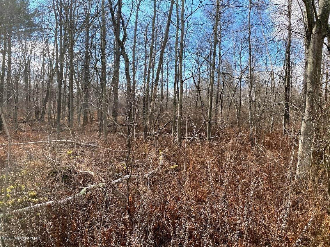 18. Land for Sale at 14 Driftwood Road Blakeslee, Pennsylvania 18610 United States