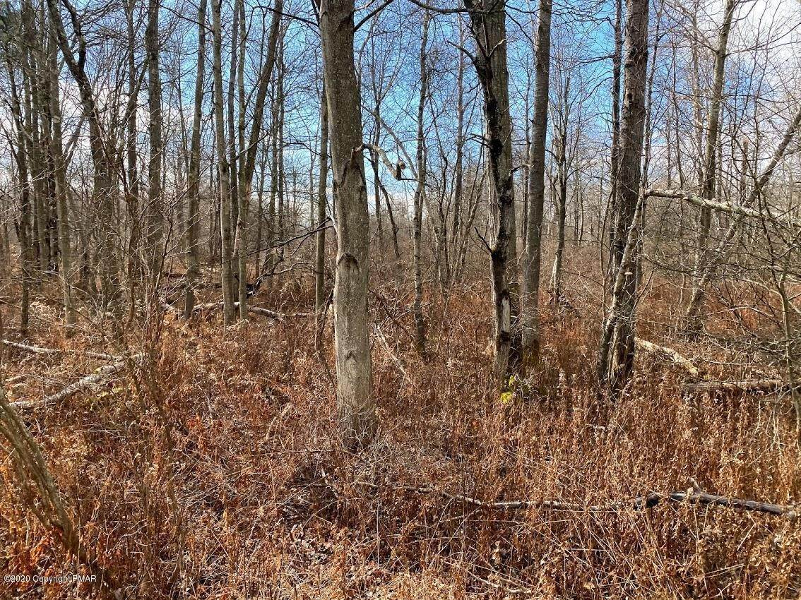 Land for Sale at 14 Driftwood Road Blakeslee, Pennsylvania 18610 United States