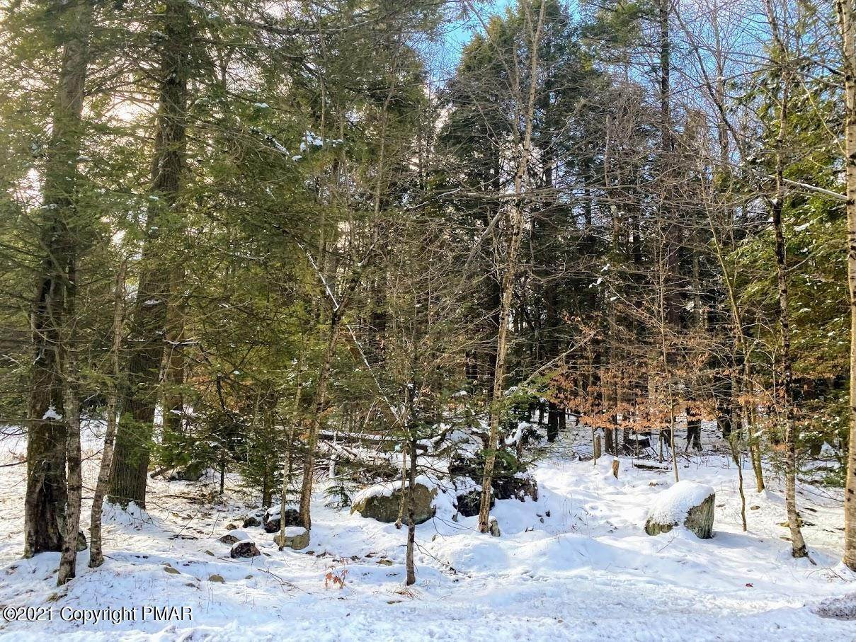 3. Land for Sale at 163 King Arthur Rd Blakeslee, Pennsylvania 18610 United States