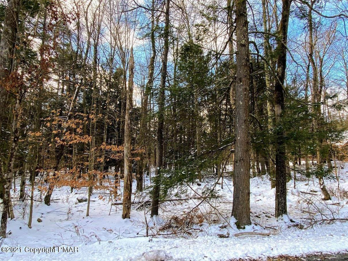 5. Land for Sale at 163 King Arthur Rd Blakeslee, Pennsylvania 18610 United States