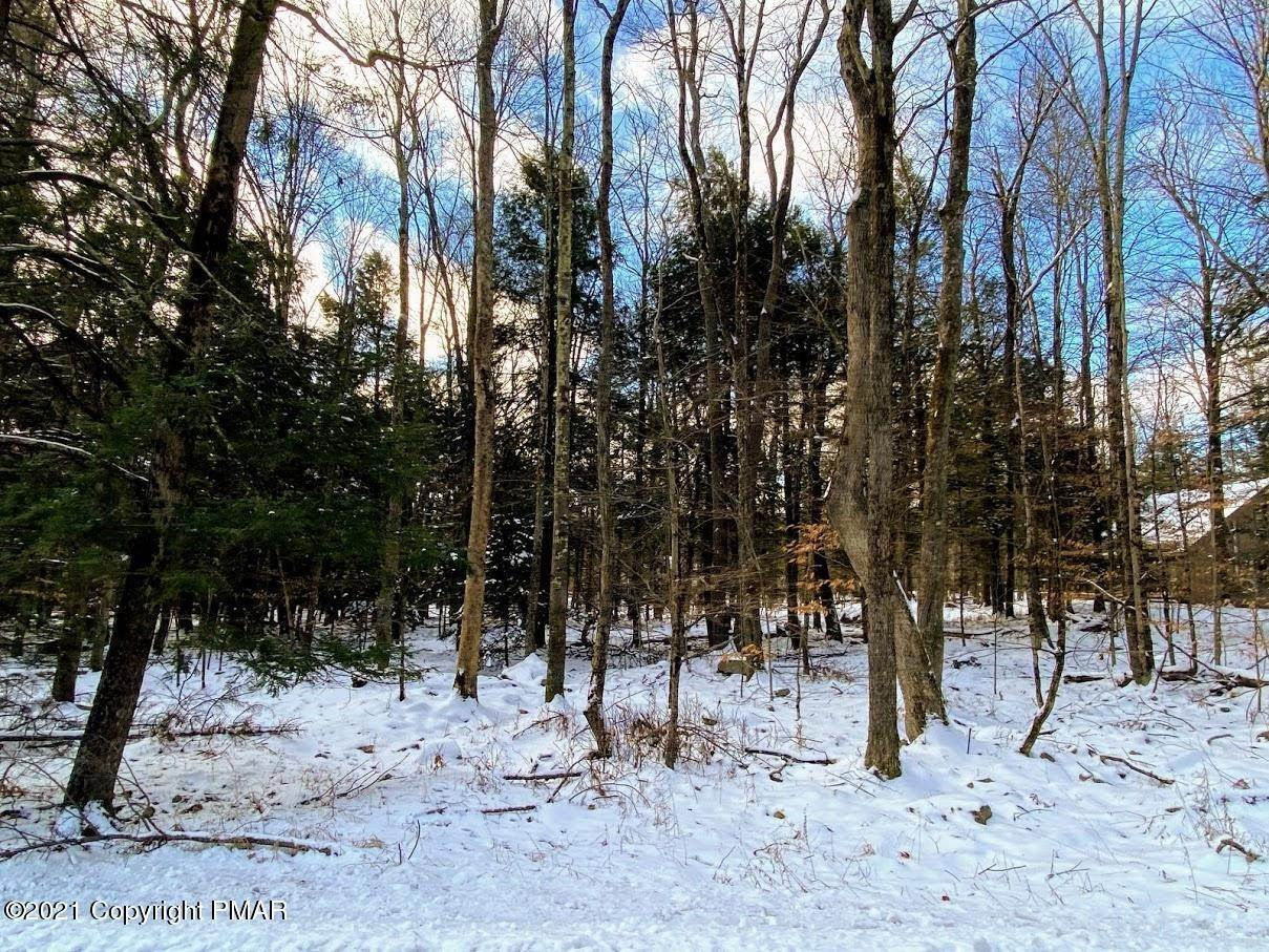 6. Land for Sale at 163 King Arthur Rd Blakeslee, Pennsylvania 18610 United States