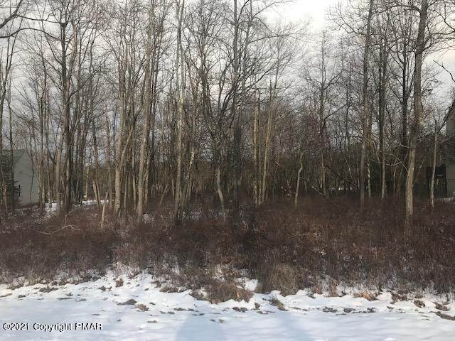 Land for Sale at 67 Pine Needle Rd Pocono Pines, Pennsylvania 18350 United States