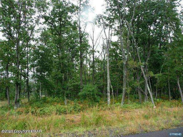 2. Land for Sale at 263 Butternut Lane Hazleton, Pennsylvania 18202 United States