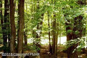 Land for Sale at 22 Tanglewood Drive Pocono Pines, Pennsylvania 18350 United States