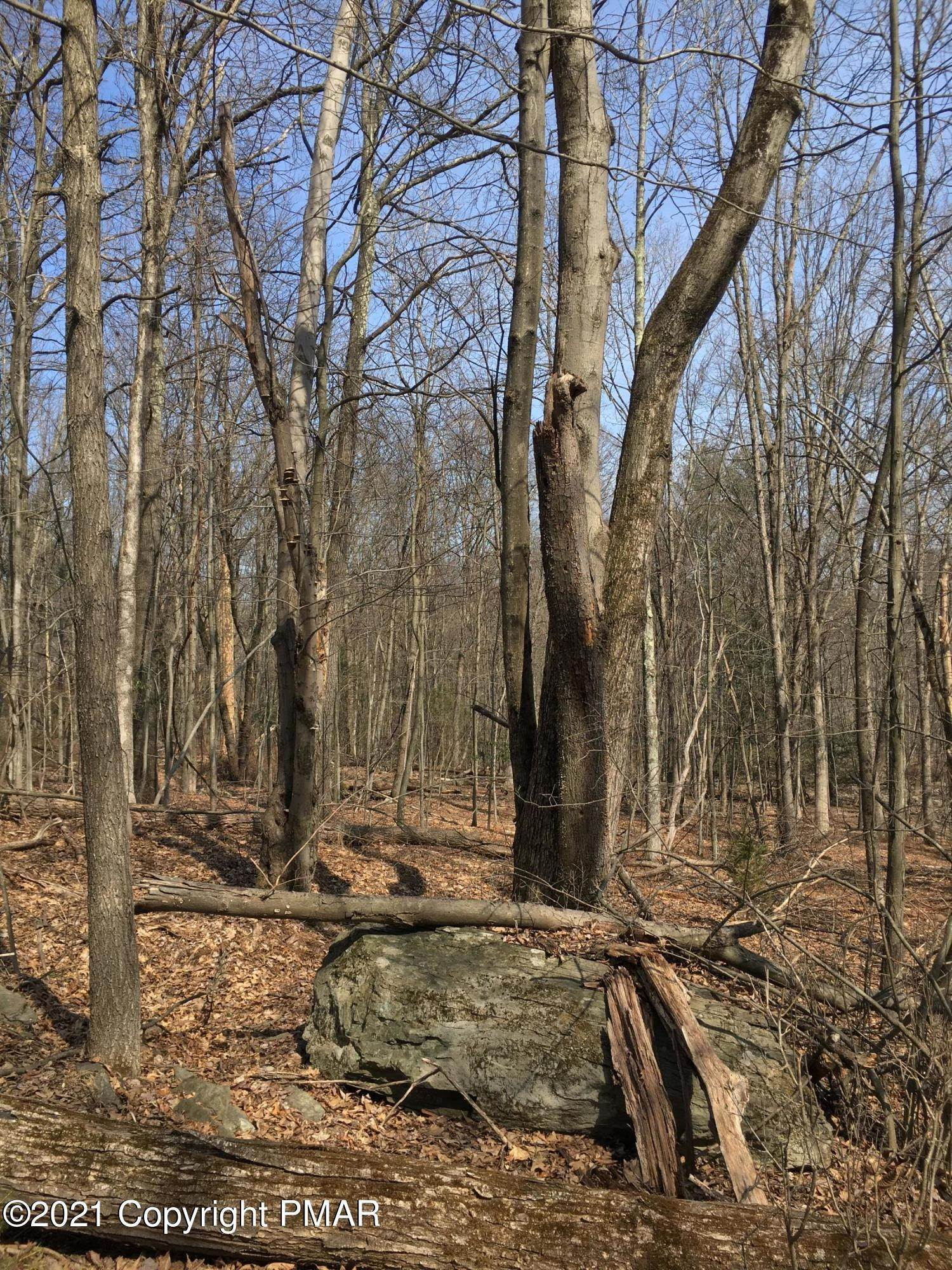 2. Land for Sale at 576 T Frantz Hill Rd Scotrun, Pennsylvania 18355 United States