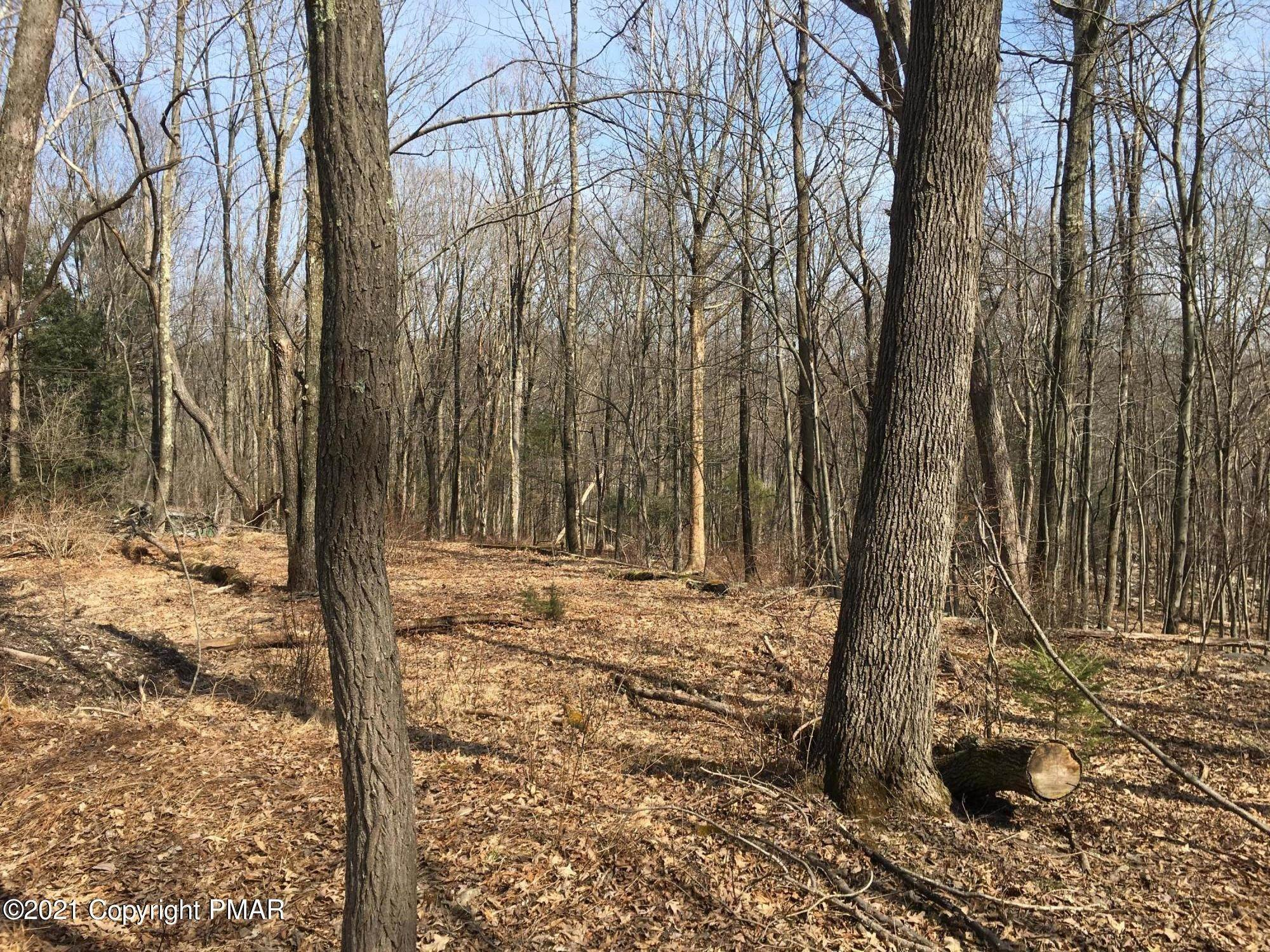 3. Land for Sale at 576 T Frantz Hill Rd Scotrun, Pennsylvania 18355 United States